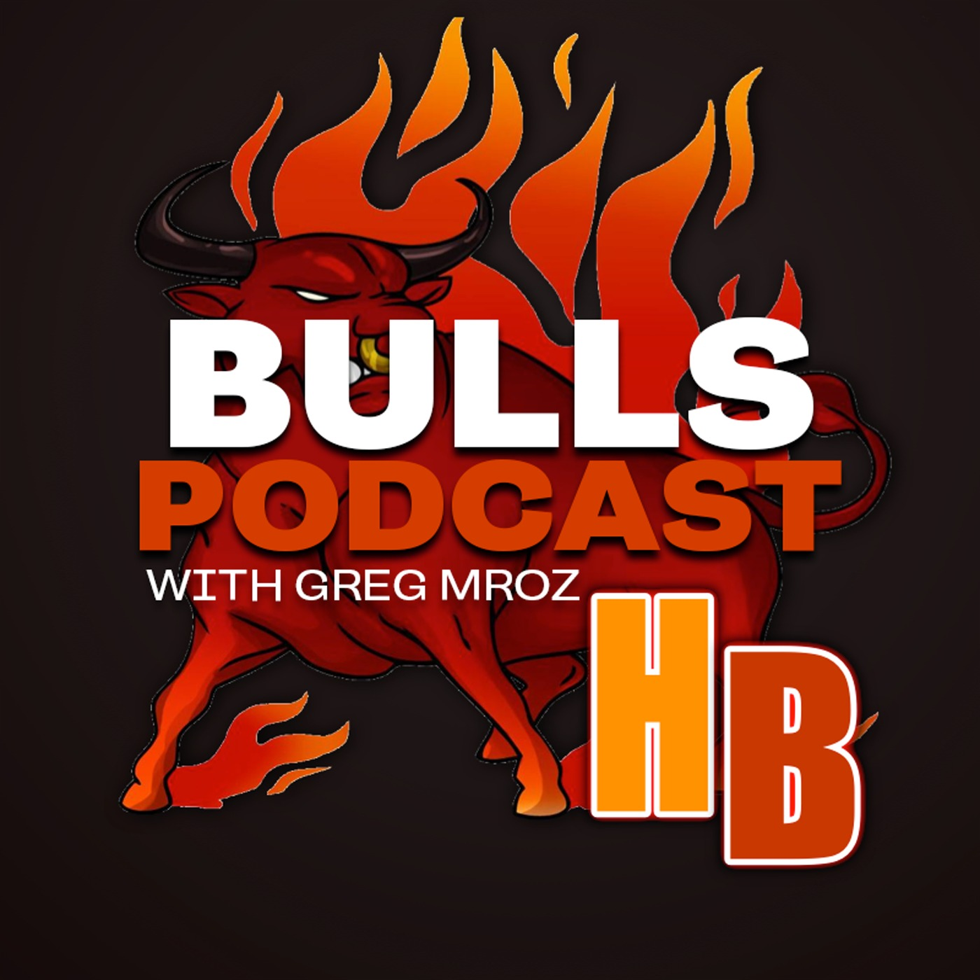 The Hoop Ball Chicago Bulls Podcast
