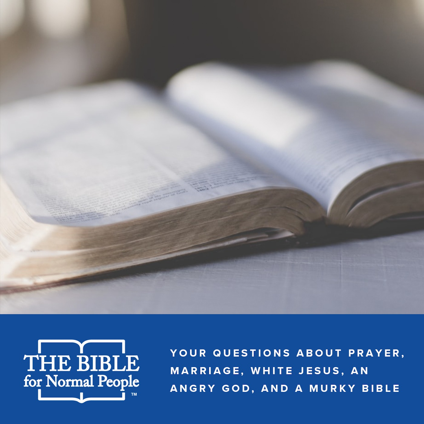 Episode 156: Pete and Jared - Your Questions About Prayer, Marriage, White Jesus, an Angry God, and a Murky Bible